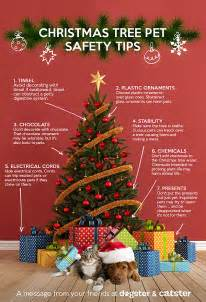 how to keep your christmas tree safe for pets photo