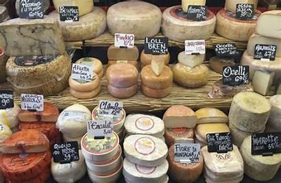 Cheese Recipes Making Hard Soft Curd Nerd