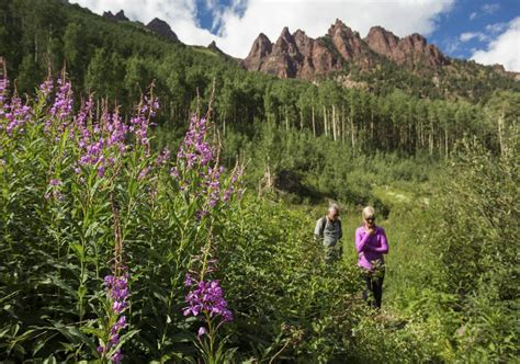 aspen colorado maroon bells vacation towns near hike wilderness country snowmass mountain town capasso christina visitors times area