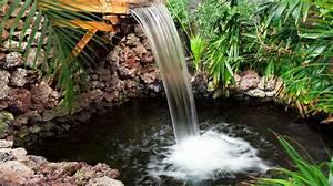 Fontaine Pour Bassin A Poisson : bassin fontaine cascade de jardin que choisir c t maison ~ Voncanada.com Idées de Décoration