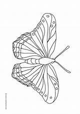 Butterfly Coloring Butterflies Pages Mandala Flying Wings Different Beautifl Patterns Clipartqueen sketch template