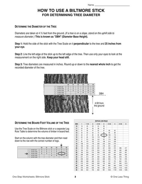 Biltmore Stick, One Step Worksheet Downloads  One Less Thing
