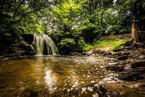 Landscape, Nature, Stream, Water, Wood