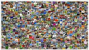 Bilderwand Gestalten Ohne Rahmen : was tun mit digitalen fotos bienenstube ~ Markanthonyermac.com Haus und Dekorationen