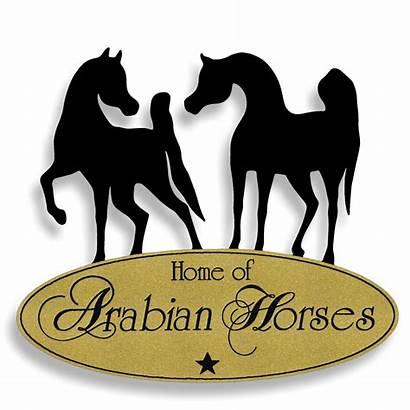 Relief Arabian Stallions Robust Motives Remarkable Motifs