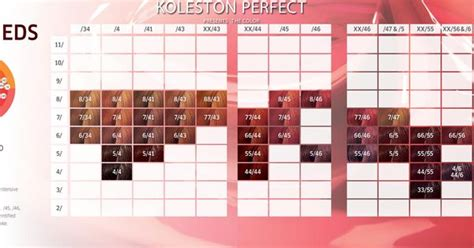 Wella Professionals Koleston Perfect Presents The Color