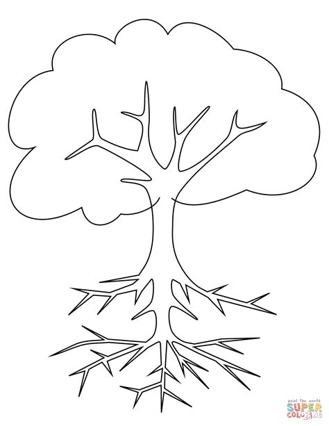 tree  roots coloring page  printable coloring pages