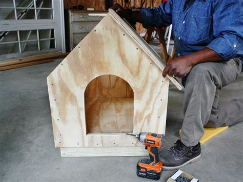 build  simple gabled roof doghouse  tos diy