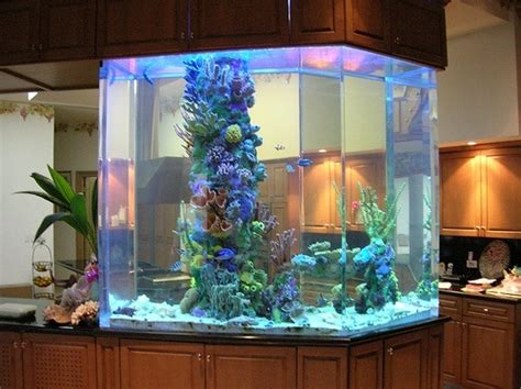 luxury kitchen lighting 30 fish tank ideas for a relaxing home