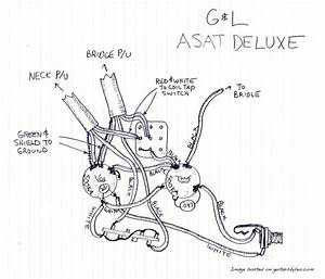Asat Deluxe  Tribute Asat Deluxe Carved Top Wiring Diagram