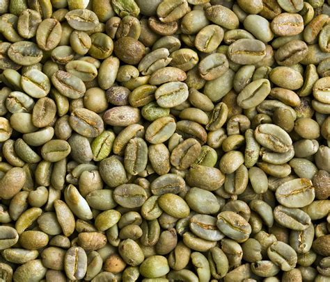 A wholesale coffee supplier limini coffee is a wholesale coffee supplier and roaster based in west yorkshire that specialises in wholesale coffee beans, barista training & commercial espresso machines. Green Coffee Bean Experts - Sourcing Green Coffee Beans ...
