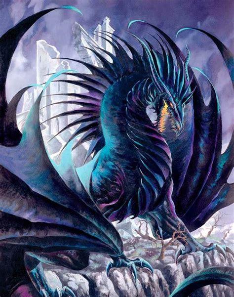 pin  melanie fisher  dragons fantasy dragon dragon