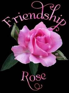 Friendship Rose Pictures, Photos, and Images for Facebook ...