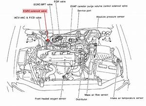 I Have A 1999 Nissan Altima With A2 5 4 Cyl  It Is Showing A P 400 Code  I Am Wondering If There