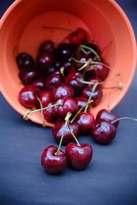 250  Amazing Cherry Photos  U00b7 Pexels  U00b7 Free Stock Photos