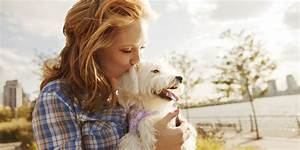 What You Need to Know About Adopting a Dog of Any Age ...