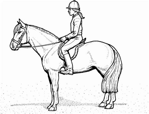 pferdebilder zum ausmalen ausmalbildclub