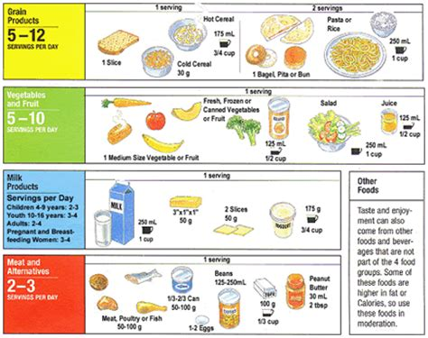 Food Serving Sizes Chart - Arenda-stroy