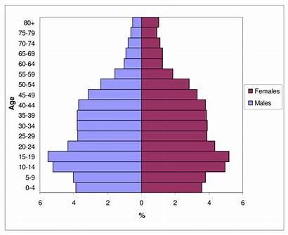 Vietnam Population Age Mortality Pyramids Autopsy Findings