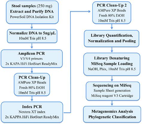 Illumina Sequencing Protocol by Workflow Using The 16s Library Preparation Protocol In