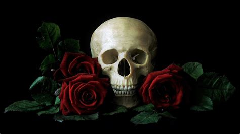 Black Skull with Rose Wallpapers Top Free Black Skull