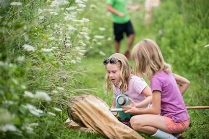 Camp Summer Fernbrook Fiddlehead Farms Fernbrookfarms Camps