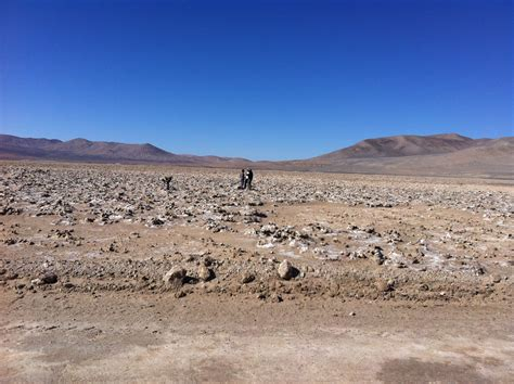 Life In Worlds Driest Desert Seen As Sign Of Potential