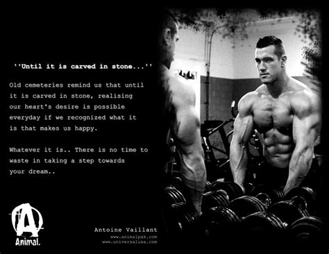 Animal Pak Quotes Wallpaper - antoine v s journey the war has begun page 4