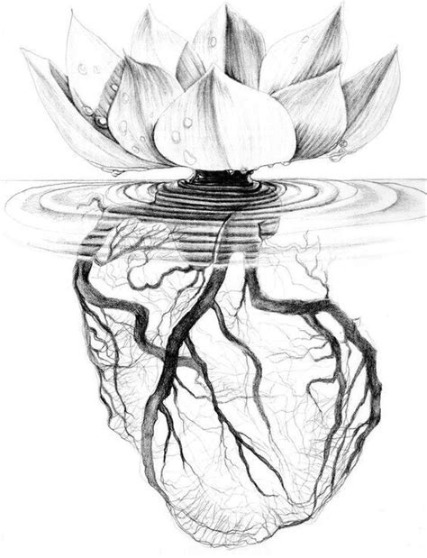 72. My Heart is Like a Lotus Flower   Roots tattoo, Art, Flower tattoos