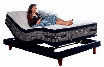 Bed Sealy Adjustable Mattress Posturepedic Spondylolisthesis Base