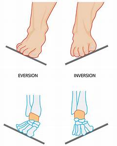 Orthotics, Orthotic and Orthodic. What are foot orthotics ...