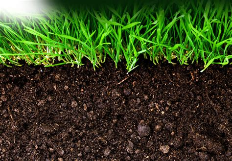 Best Earth Right Soil Conditioner