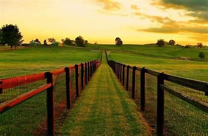 Canada Ontario Nature Landscape Sunset Field Grass