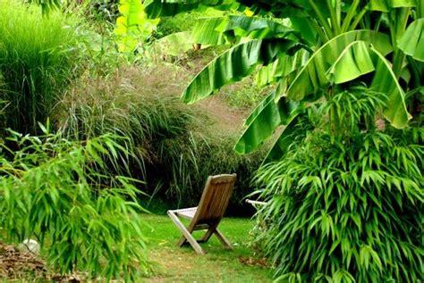 cuisiner des pousses de bambou les jardins de la poterie hillen 01 06 10 01 07 10