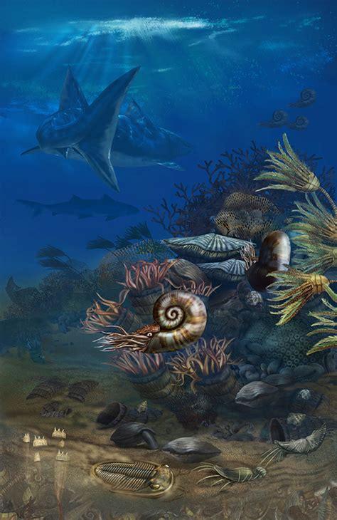 Karen Carr Studio: Permian Seafloor
