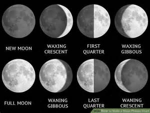 8 Moon Phases Chart