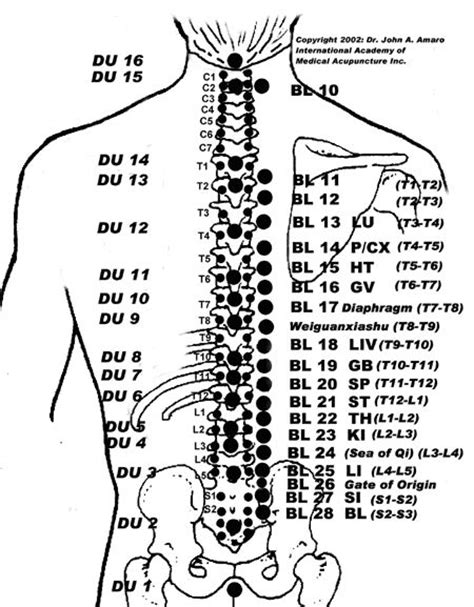 acupuncture grossesse si e 294 best acupuncture images on acupuncture