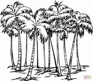 Some of Coconut Palms coloring page | Free Printable ...