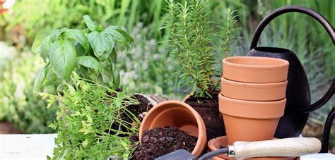 Gartenarbeit Im März Was Im Frühjahr Zu Tun Ist Haus