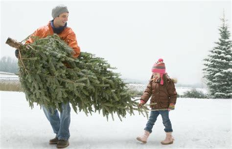 how to keep a christmas tree fresh longer how to make