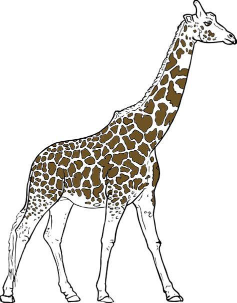 giraff animal outline clip art  clkercom vector clip