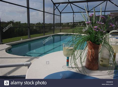 swimming pool and patio area with insect mesh
