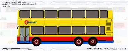 Transpng Bas Citybus Views