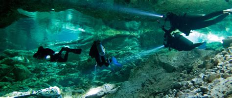 Best Dive Shop by What Are The Best Dive Shops In Playa Diving