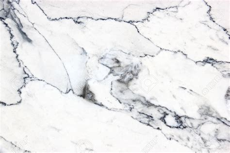 white marbel black and white marble www pixshark com images galleries with a bite