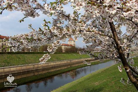 Pavasaris Kaune | We love Lithuania
