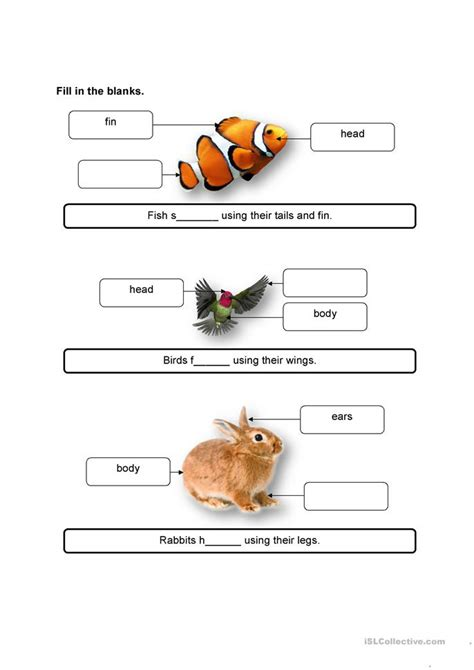 animals and their movement worksheet free esl printable