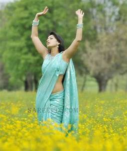 Anushka shetty saree stills from Damarukam movie