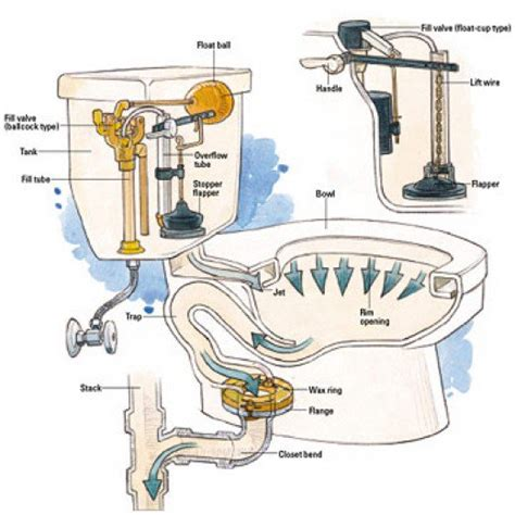 Parts Of A Water Closet by Common Toilet Troubles And How To Address Them Dengarden