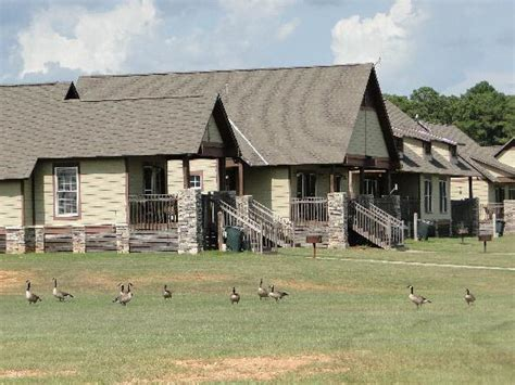 lake eufaula cabins lakeside cottages picture of lakepoint resort state park